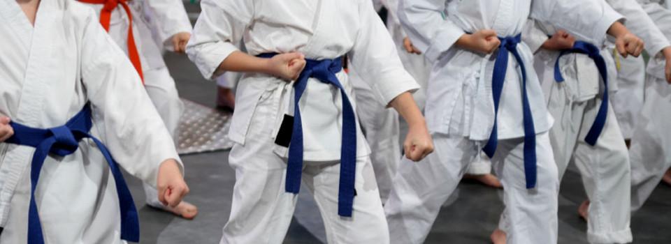 Corsi di Karate Palermo